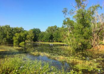 Marlow Lagoon